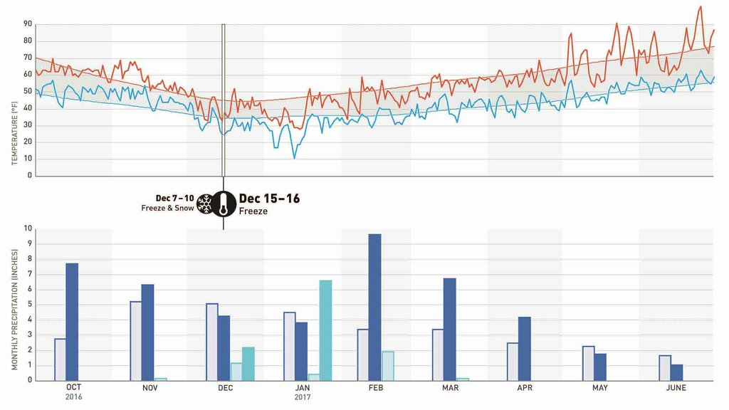 Weather Timeline blog version_Page_2.jpg