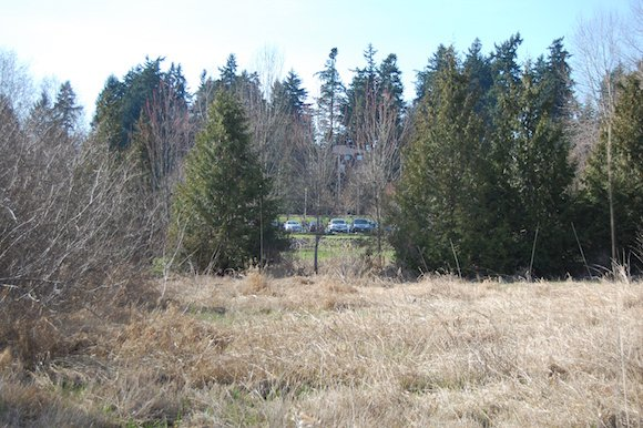 Existing view of the Park and Ride site from the nature park.